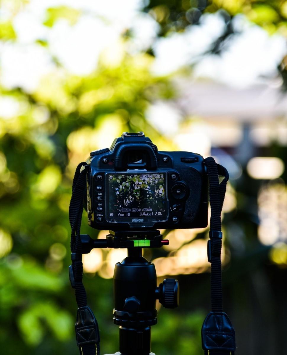 erhvervsfotograf
